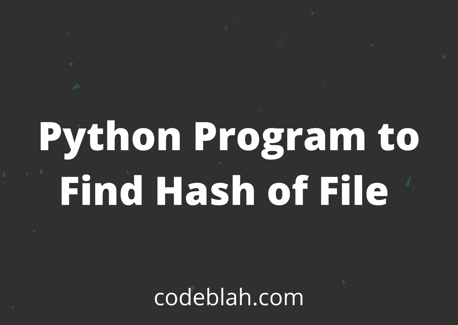 Python Program to Find Hash of File